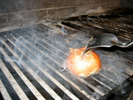 Onion on grill