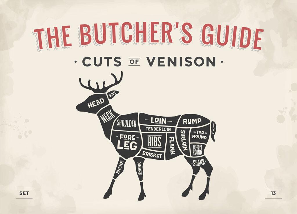 Cuts of venison illustration